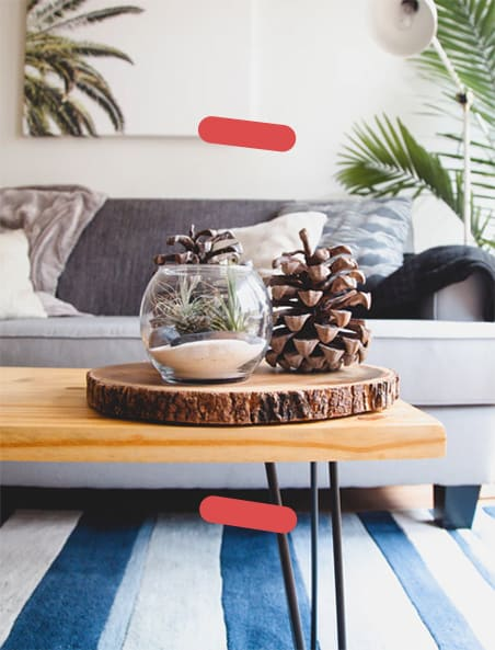 Pinecone display on table