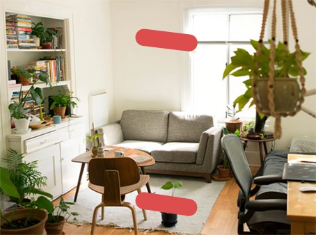 Cozy living room with hanging plants